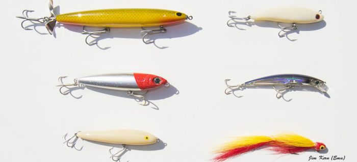 My Favorite Peacock Bass Fishing Lures - River Plate Anglers